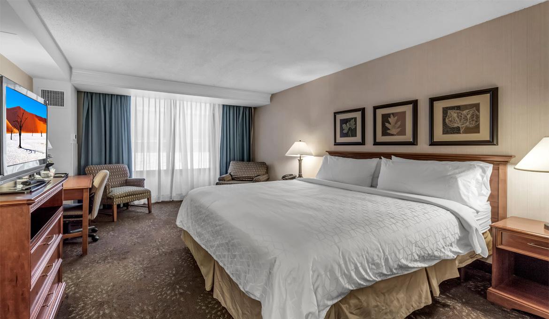 Buffalo Airport Hotel King Room